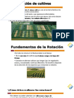 Sesión 3 Rotación y Cedula crítica de cultivos-convertido.docx