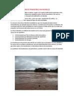 ÁREAS RIBEREÑAS INUNDABLES.docx