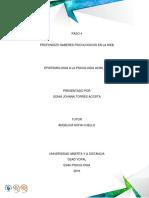 Trabajo de Epistemologia a La Psicologia Paso 5