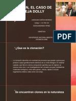 Presentacion Clonacion, El Caso de La Oveja Dolly