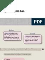 Chemical Burn (SCAL 2)
