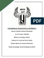 ENSAYO  LAS RAZONES DEL DERECHO.docx