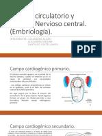 Sistema Cardiocirculatorio Ynervioso