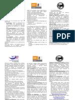 triptico_inmujeres.pdf