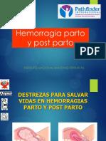 5.b. Hemorragias p y Pp 2018