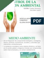 diapositivascontoldelagerstionambiental-160313153301.pdf