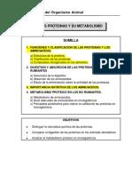 LAS_PROTEINAS_Y_SU_METABOLISMO.docx