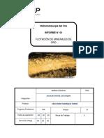 Laboratorio 1 - Flotación de Mineral de Oro