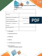 Plantilla Guia Informe Ejecutivo