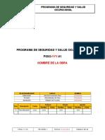 PROGRAMA DE SEGURIDAD Y SALUD OCUPACIONAL.doc