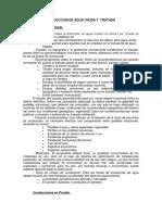 CONDUCCIÓN  A PRESION -2015.pdf