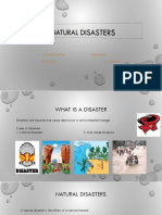 Natural disasters ppt.pptx