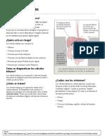 folleto colelitiasis