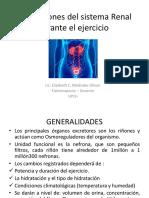 adaptaciones del sistema renal durante el ejercicio