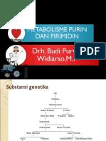 11. Metabolisme Asam Nukleat