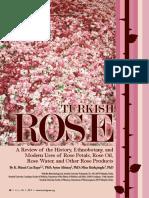 HG96-Rose.pdf