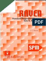 RAVEN Standard Progresive Matriks-General.pdf