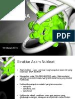 Lect_03-DNA-dan-RNA (1).ppt