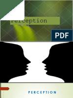 perception-ppt.pptx