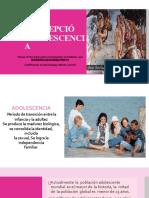 anticoncepcinenlaadolescencia-170806191452 (1)