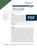 Effect of RBI Grade 81 on Strength Characteristics