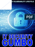 IT Security Gumbo the Complete Vulnerability Lifecycle
