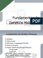 Fundamentos de Genetica Molecular