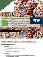 5_digestivo