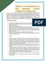 Cuidados Basicos de Enfermeria en Cirugiagenito Urinario