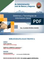 Sistemas y Tecnologias de Informacion Bancaria y de Seguros