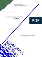 trabalho processos industriais - caldeira.pdf