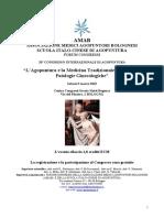 ATTI  33° Congresso 2019 AMAB