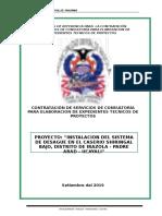 TDR Elaboracion.exp.Tec. Shiringal Bajo