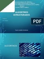 estructura algoritmos.pptx