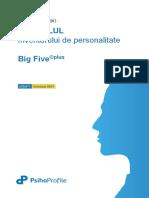 Extrase Manual Big Five plus 2017.pdf