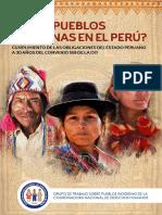 Informe Perú