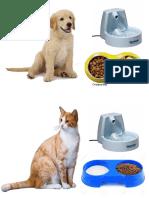 Alimentos Que Comen Los Animales
