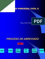266193933 10 Proc Abreviado Ppt