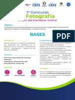 Concurso convocatoria fotografía