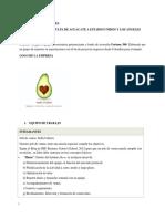 Plan de Exportaciones MARIAVOCADO