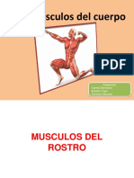 Portafolio Anatomia