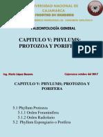 Cap v Protozoa y Cinidario