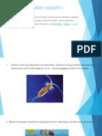 Ekosistem Perairan ( Akuatik )2