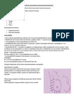 Mamografía de screneening y técnicas de posicionamiento pdf.pdf
