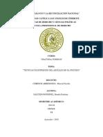 Técnicas de Expresión Del Abogado en El Proceso-brenda Salcedo Rondinel