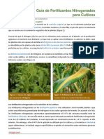 106. Guia de Fertilizantes Nitrogenados Para Cultivos