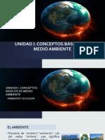 Unidad 1. Conceptos Básicos de Medio Ambiente