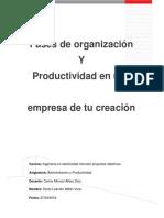 Fases de La Organización