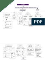 Unidad 2 - El Sujeto y Sus Modificadores - Mapa Conceptual