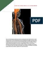 Listado de Enfermedades Del Sistema Nervioso y El Sistema Inmune